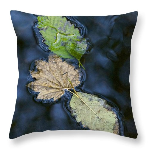Photography Throw Pillow featuring the photograph Three Leaves by Sean Griffin