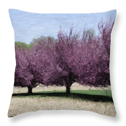 Tree Throw Pillow featuring the photograph Trees On Warwick by Trish Tritz
