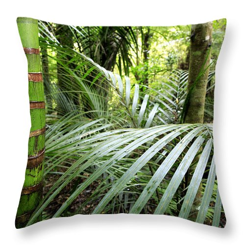 Environment Throw Pillow featuring the photograph Tropical Jungle by Les Cunliffe
