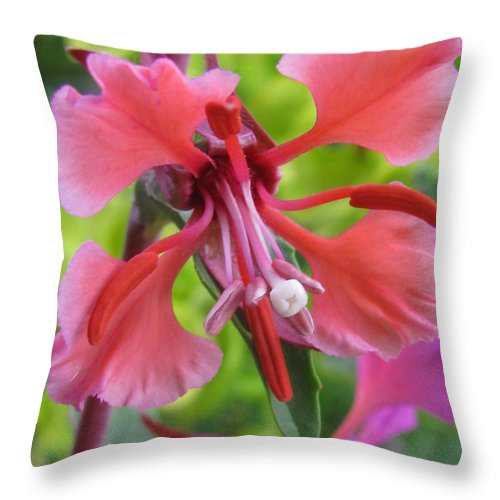 Flower Throw Pillow featuring the photograph Unburdened by Tina Marie