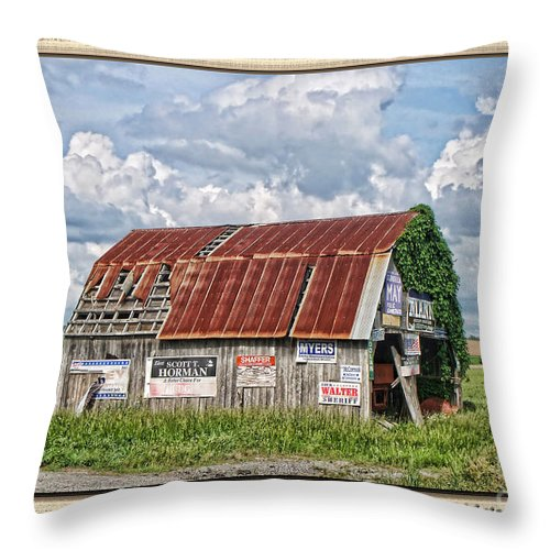 Landscape Throw Pillow featuring the photograph Vote For Me I by Debbie Portwood