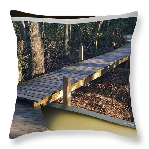 2d Throw Pillow featuring the photograph Walk Bridge by Brian Wallace