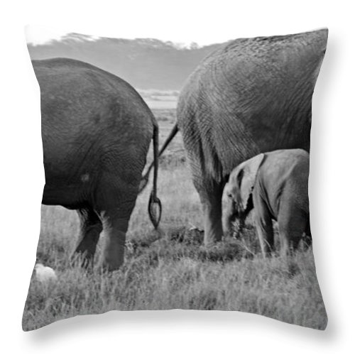 Elephants Throw Pillow featuring the digital art Wild Elephants by Pravine Chester