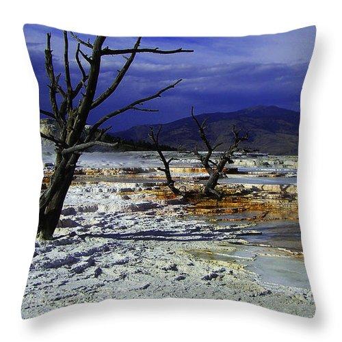 Yellowstone National Park Throw Pillow featuring the photograph Yellowstone National Park 6 by Xueling Zou