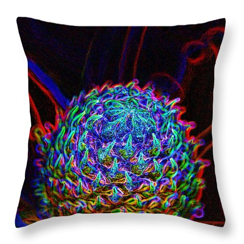 Photoshop Throw Pillow featuring the photograph Pincushion Protea Bud by Werner Lehmann