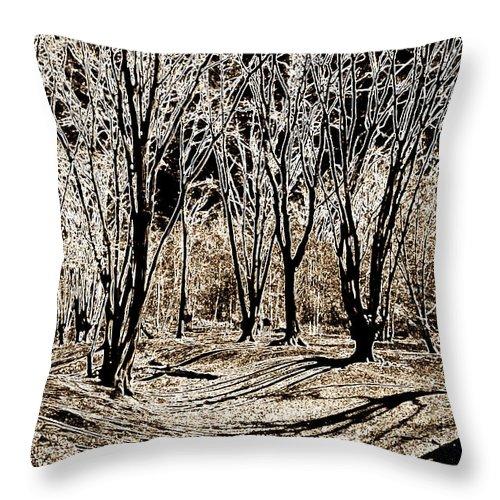 Fort Throw Pillow featuring the digital art Ambresbury Banks by David Pyatt