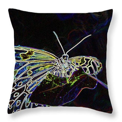 Photoshop Throw Pillow featuring the photograph Colorful Butterfly by Werner Lehmann