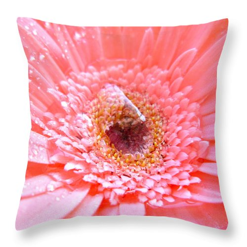 Gerbera Photographs Throw Pillow featuring the photograph 1733-001 by Kimberlie Gerner