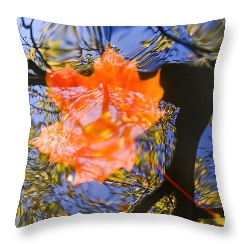 Leaf Throw Pillow featuring the photograph Autumn Leaf On The Water by Michal Boubin