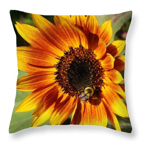 Flora Throw Pillow featuring the photograph Busy Bee by Bruce Bley
