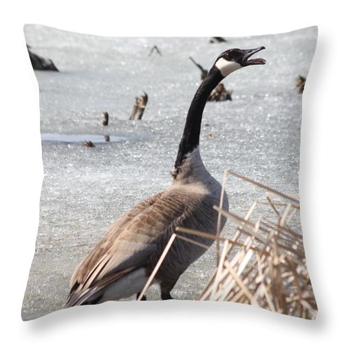 Goose Throw Pillow featuring the photograph Call Of The Wild by Lori Tordsen