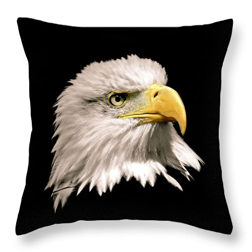 Bald Eagle Throw Pillow featuring the photograph Eagle Profile Front by Steve McKinzie
