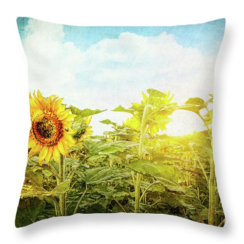 Agriculture Throw Pillow featuring the photograph Field Of Colorful Sunflowers And Blue Sky by Sandra Cunningham
