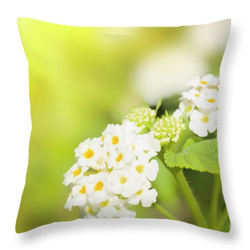 Flowers Throw Pillow featuring the photograph Floral Background. Lantana Flowers by MotHaiBaPhoto Prints