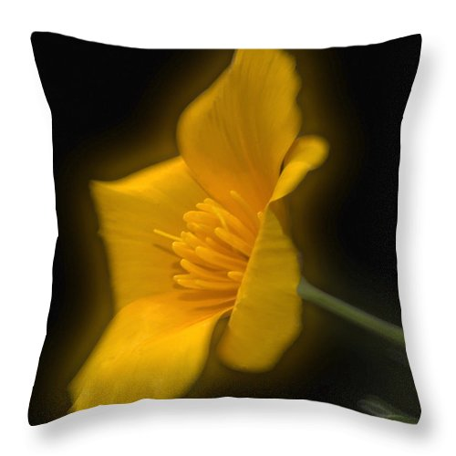 Flower Throw Pillow featuring the photograph Flower by Cliff Norton