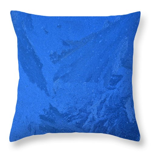 Frost Throw Pillow featuring the photograph Frost On A Windowpane by Thomas R Fletcher
