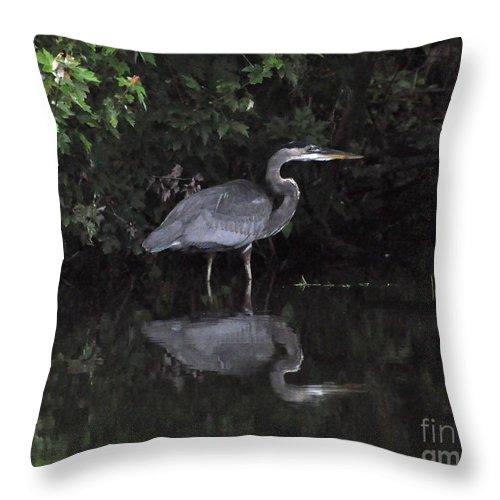 Heron Throw Pillow featuring the photograph Great Heron by John Black