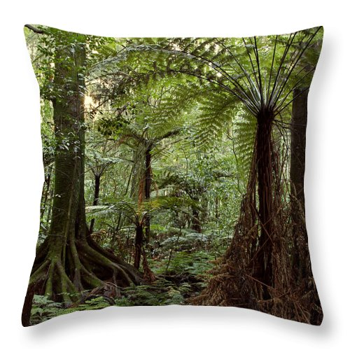 Bush Throw Pillow featuring the photograph Jungle by Les Cunliffe
