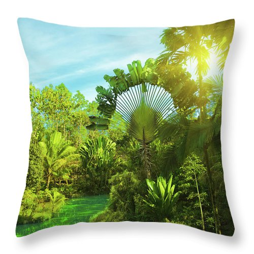 Green Throw Pillow featuring the photograph Lake In Deep Forest by MotHaiBaPhoto Prints