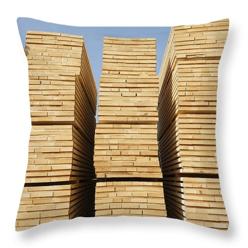 Mp Throw Pillow featuring the photograph Logged Timber From The Tropical by Cyril Ruoso