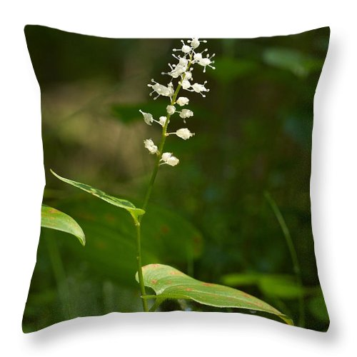 Helvetinjarvi National Park Throw Pillow featuring the photograph May Lily by Jouko Lehto