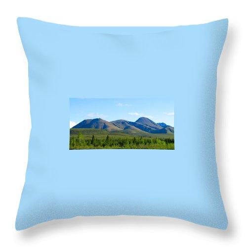 Alaska Throw Pillow featuring the photograph Roving Hills by Michael Anthony
