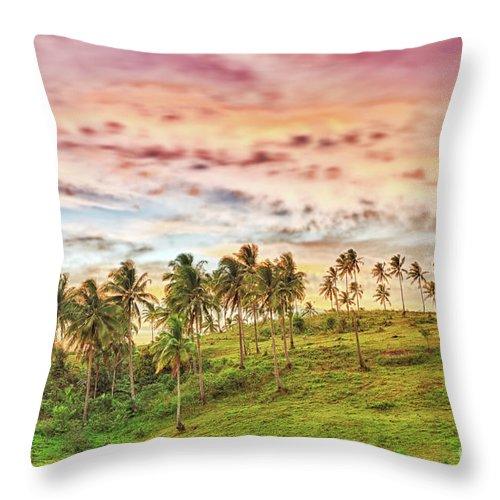 Sunrise Throw Pillow featuring the photograph Rural Landscape by MotHaiBaPhoto Prints