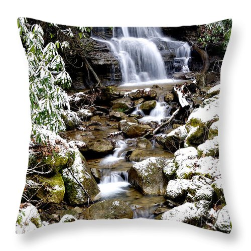 Backfork Of Elk Throw Pillow featuring the photograph Winter Waterfall Back Fork Of Elk River by Thomas R Fletcher