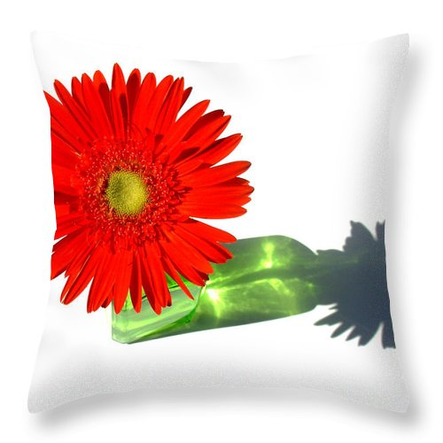 Gerbera Photographs Throw Pillow featuring the photograph 2002a-1 by Kimberlie Gerner
