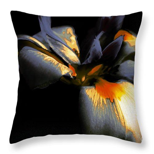 Flower Throw Pillow featuring the photograph Abstract Iris by Karen Lewis