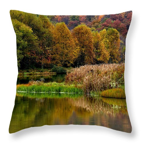 West Virginia Throw Pillow featuring the photograph Autumn Big Ditch Lake by Thomas R Fletcher