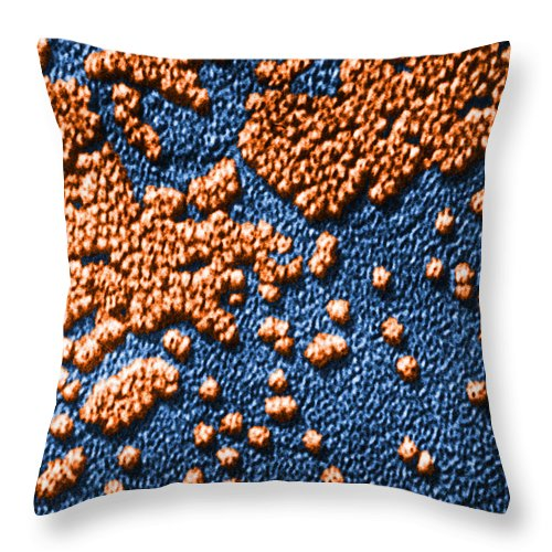 Disease Throw Pillow featuring the photograph Hepatitis Virus by Omikron