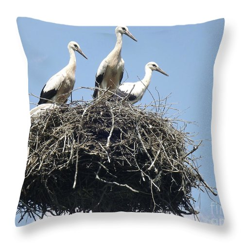 Storks In Nest Throw Pillow featuring the photograph 3 Storks In The Nest. Lithuania by Ausra Huntington nee Paulauskaite