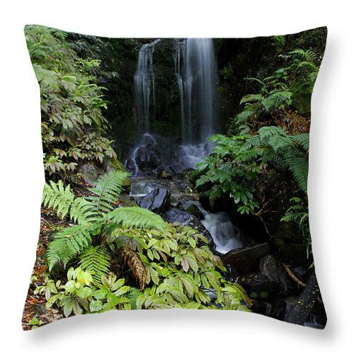 Cascade Throw Pillow featuring the photograph Waterfall by Les Cunliffe