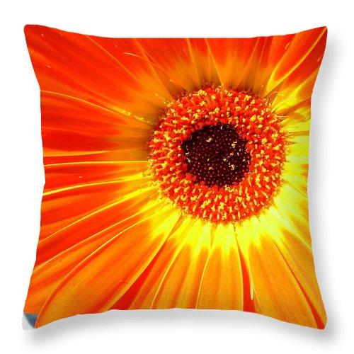 Gerber Photographs Throw Pillow featuring the photograph 3943 by Kimberlie Gerner