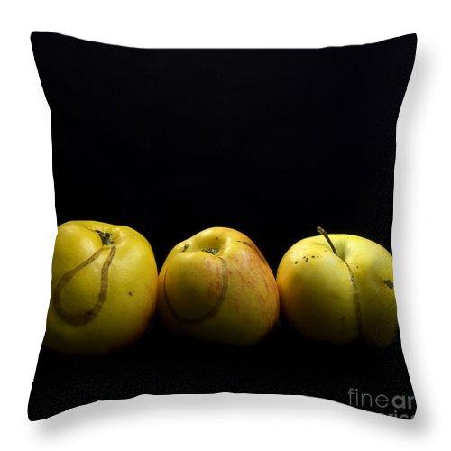 Agriculture Throw Pillow featuring the photograph Apples by Bernard Jaubert