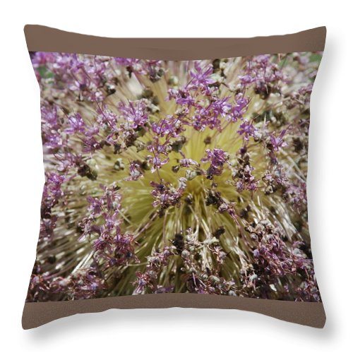 Flowers Throw Pillow featuring the photograph Boom by Michael L Gentile