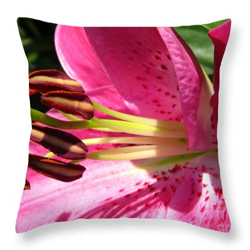 Dwarf Oriental Lily Throw Pillow featuring the photograph Dwarf Oriental Lily Named Farolito by J McCombie