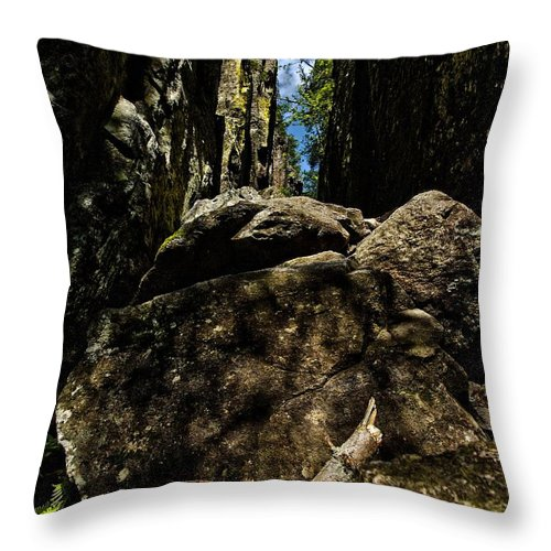 Lehtokukka Throw Pillow featuring the photograph Helvetinkolu by Jouko Lehto