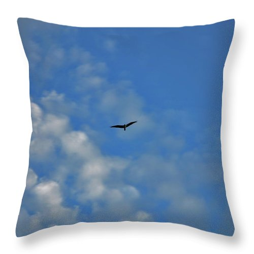 Seagull Throw Pillow featuring the photograph 4- Seagull by Joseph Keane
