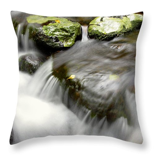 Brook Throw Pillow featuring the photograph Stream by Les Cunliffe