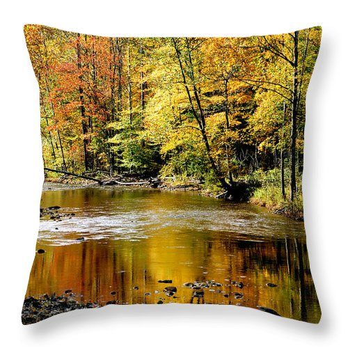 Williams River Throw Pillow featuring the photograph Williams River Autumn by Thomas R Fletcher