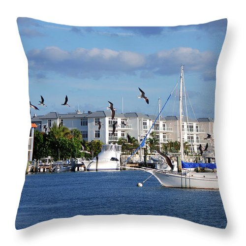 Throw Pillow featuring the photograph 5- Black Skimmers by Joseph Keane