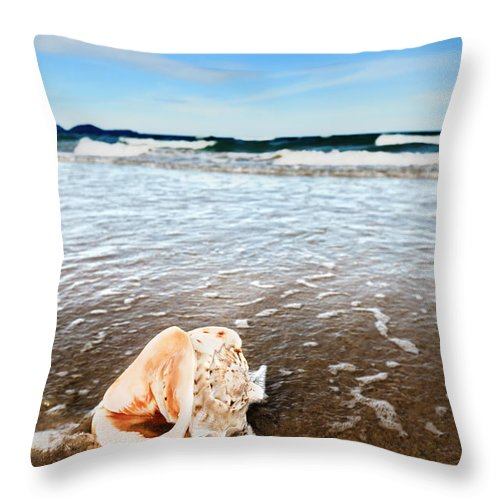 Shell Throw Pillow featuring the photograph Seashell by MotHaiBaPhoto Prints