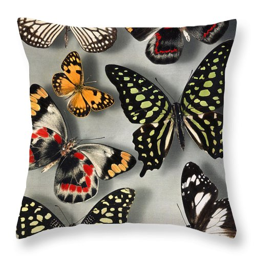 Throw Pillow featuring the photograph Untitled by Willard Culver