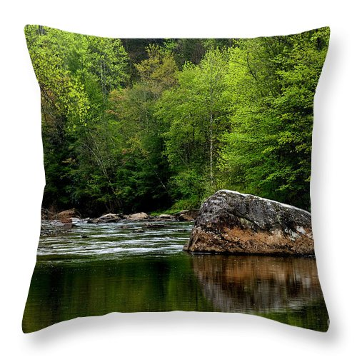 Williams River Throw Pillow featuring the photograph Williams River Scenic Backway by Thomas R Fletcher