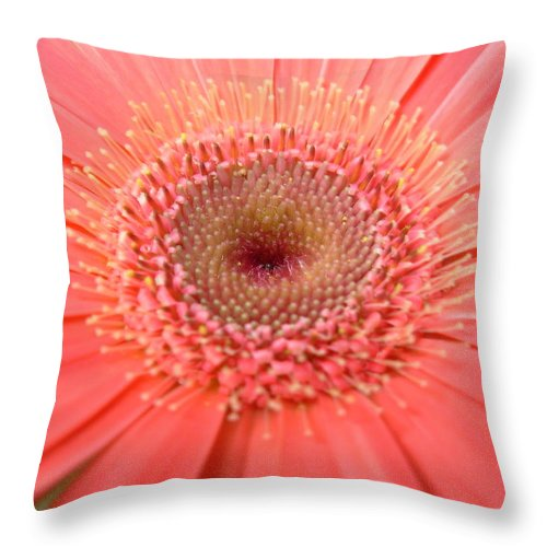 Gerber Photographs Throw Pillow featuring the photograph 5258 by Kimberlie Gerner