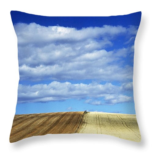 Throw Pillow featuring the photograph None by Axiom Photographic