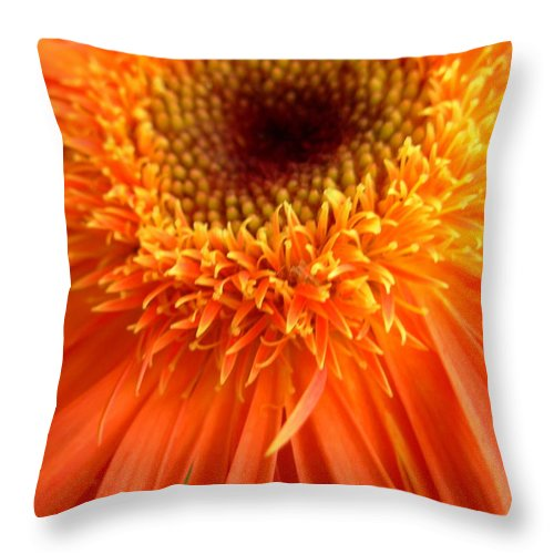 Gerber Throw Pillow featuring the photograph 6136 by Kimberlie Gerner