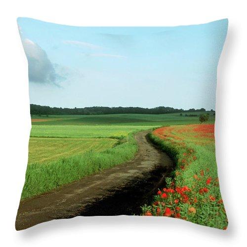 Outdoors Throw Pillow featuring the photograph Field Of Poppies. by Bernard Jaubert